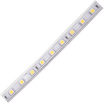 Ecola LED strip 220V STD 14,4W/m IP68 14x7 60Led/m 4200K 12Lm/LED 720Lm/m лента на катушке 100м. SA1V14ESB